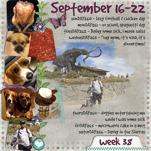 2012 - Week 38