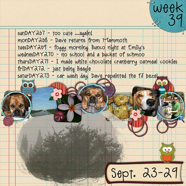 2012 - Week 39