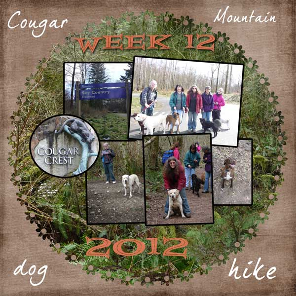 2012-week-12
