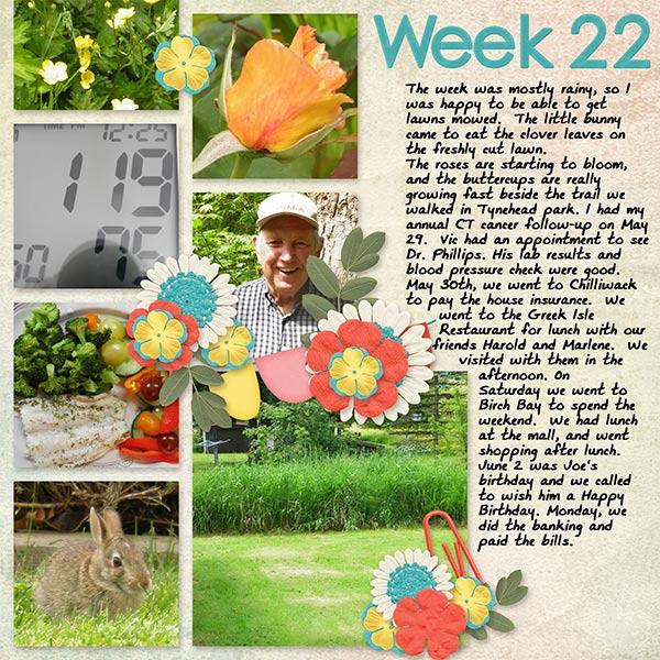 2013_week22