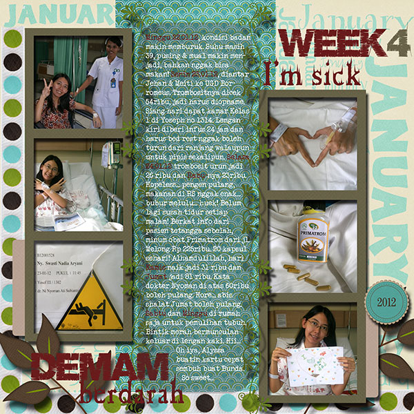Nadia_Week 4 - January 2012