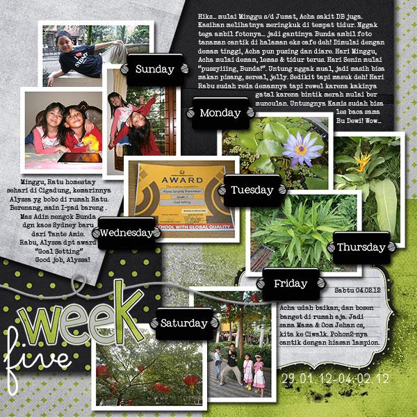 Nadia_Week 5 - February 2012