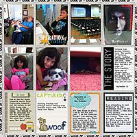 2012-project365-week37.jpg