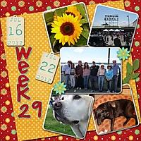 2012-week-29.jpg