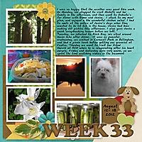 2012Week_33.jpg