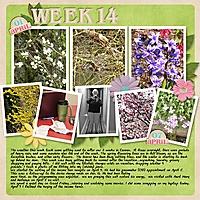 2012_Week14.jpg