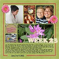 2012_Week_23.jpg