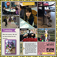 2013-project365-week12.jpg