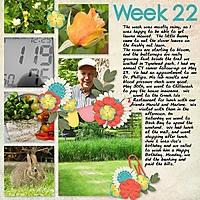 2013_week22.jpg