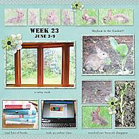 Week_23.jpg