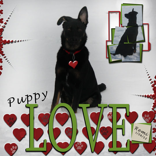 Puppy-Love4