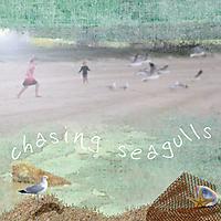 Chasing-Seagulls.jpg