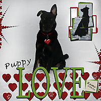 Puppy-Love4.jpg