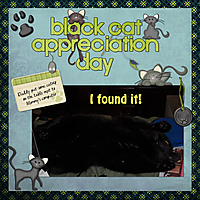 blackcatapp.jpg