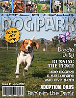 magazine_copy.jpg