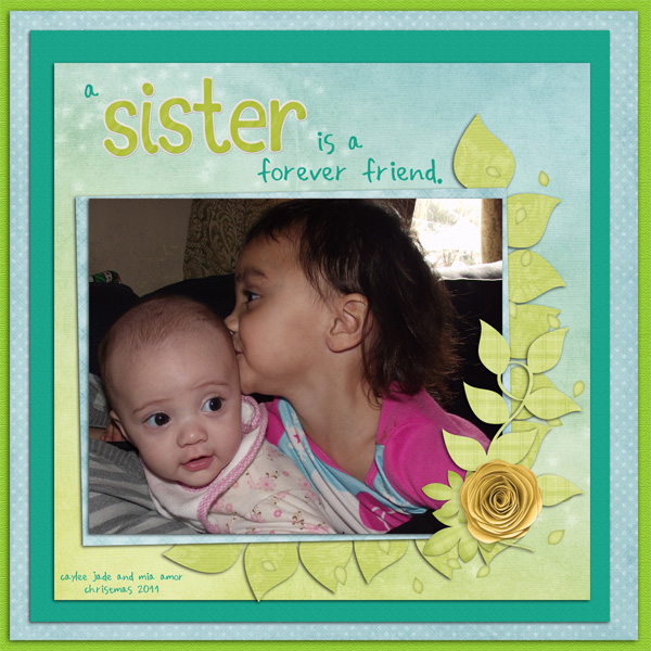 a sister is a forever friend.