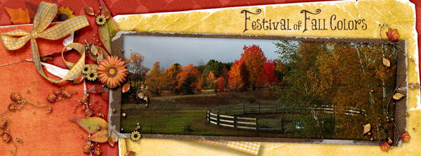 Festival of Fall Colors_FBTimeline Cover