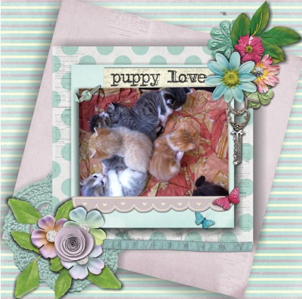 puppy_love5