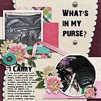 I_Carry.jpg