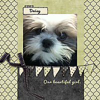 2012-09-01-Daisy.jpg