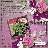 Bloom5.jpg