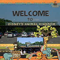 Welcome-to-Animal-Kingdom.jpg