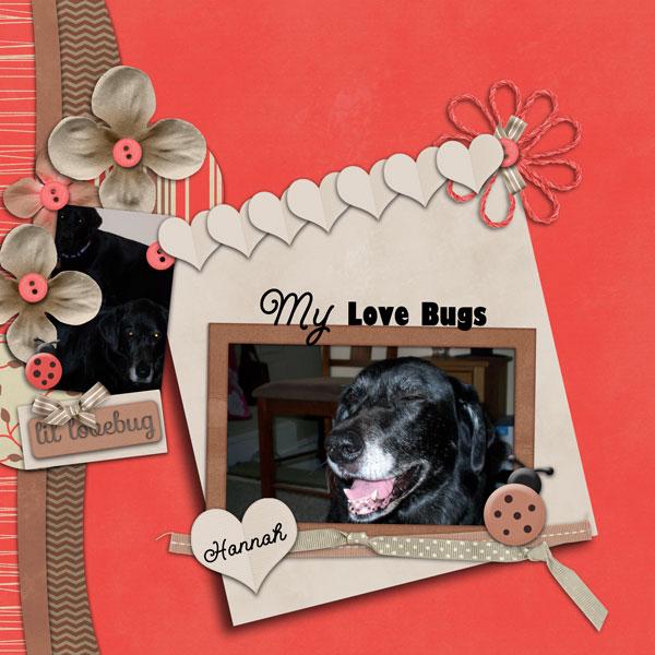 my love bugs