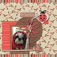 2012-10-25-Daisy.jpg