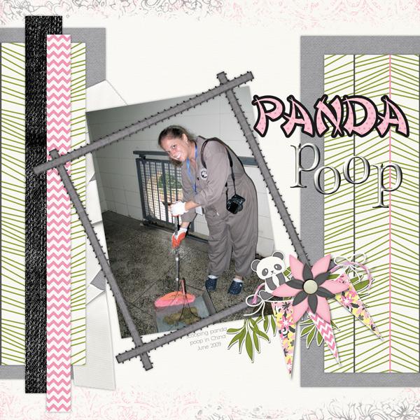 China - Panda Poop