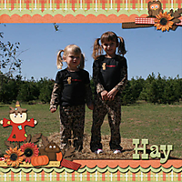 Hay_Play_-_2009_-_left-_GS_Fall_Festival_-JCD-jencdesigns_jumbophoto_tp4.jpg