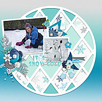 It_s-snow-cold.jpg