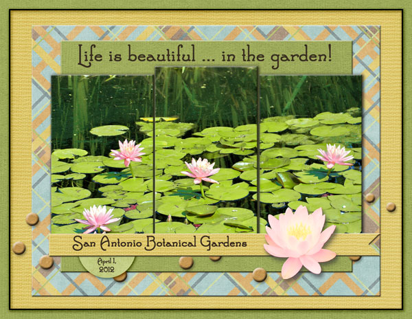 Life is Beautiful ... in the garden!