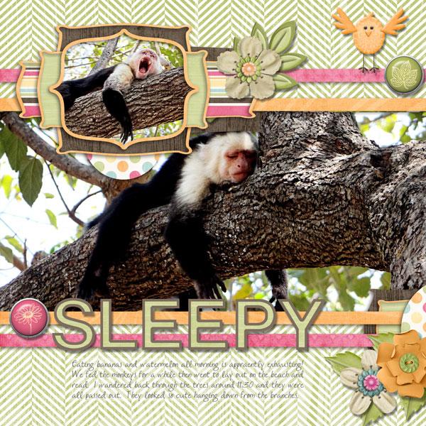 Sleepy Monkeys