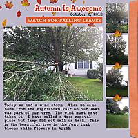 2012-10-06-Tree.jpg