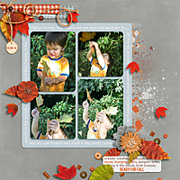 Fall-in-Florida-Oct-2014-LRT_outsidebox_template3-copy.jpg