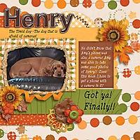 Henry_cap_adventure_rfw.jpg