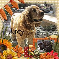 Henry_sts_cornucopia_set1_smrfw.jpg