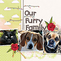 furryfamily.jpg