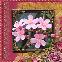 monthly_mix_wildflower_-_Page_050.jpg