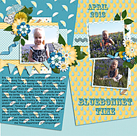 Bluebonnet-Time-4web.jpg