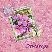 dewdrops_b.jpg
