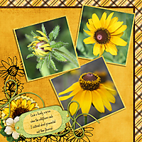 tms_sweet_sunflowers_brushes_-_Page_025.jpg