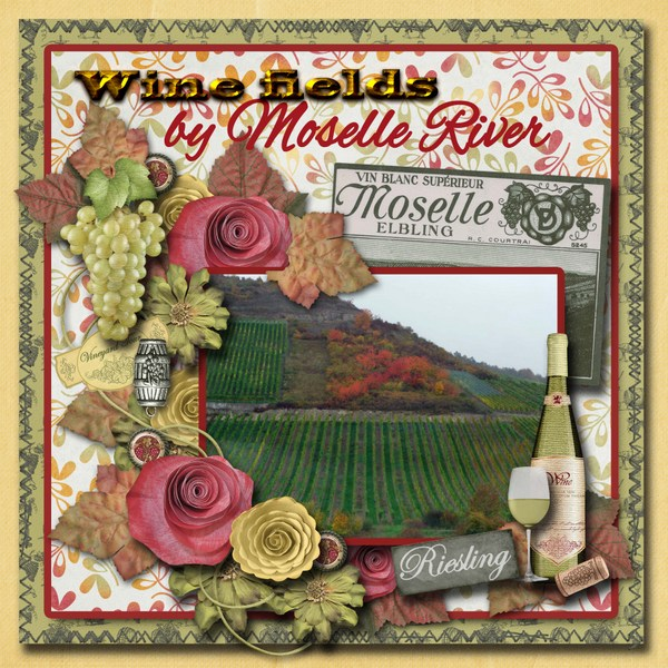 Wine_fields_by_Moselle