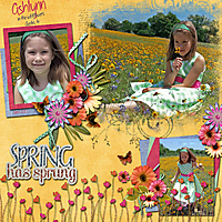 Ashlynn-Wild-Flowers-2013.jpg