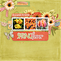Flower_Power1.jpg