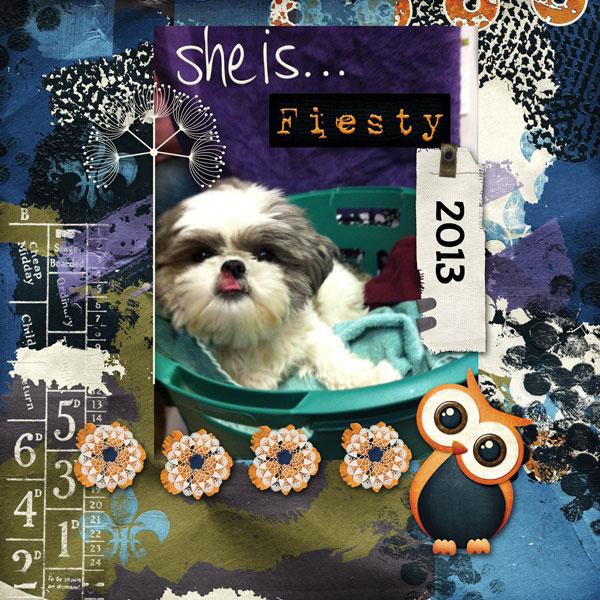 Daisy Fiesty