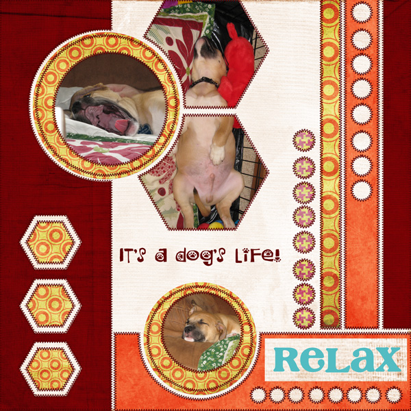 Daily Download:  It's A Dog's Life