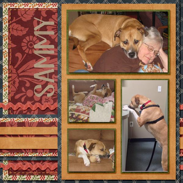 Sammy (For LissyKay)
