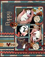 Puppy-Love7.jpg