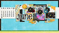 May-2013-Desktop-Challenge-GS.jpg